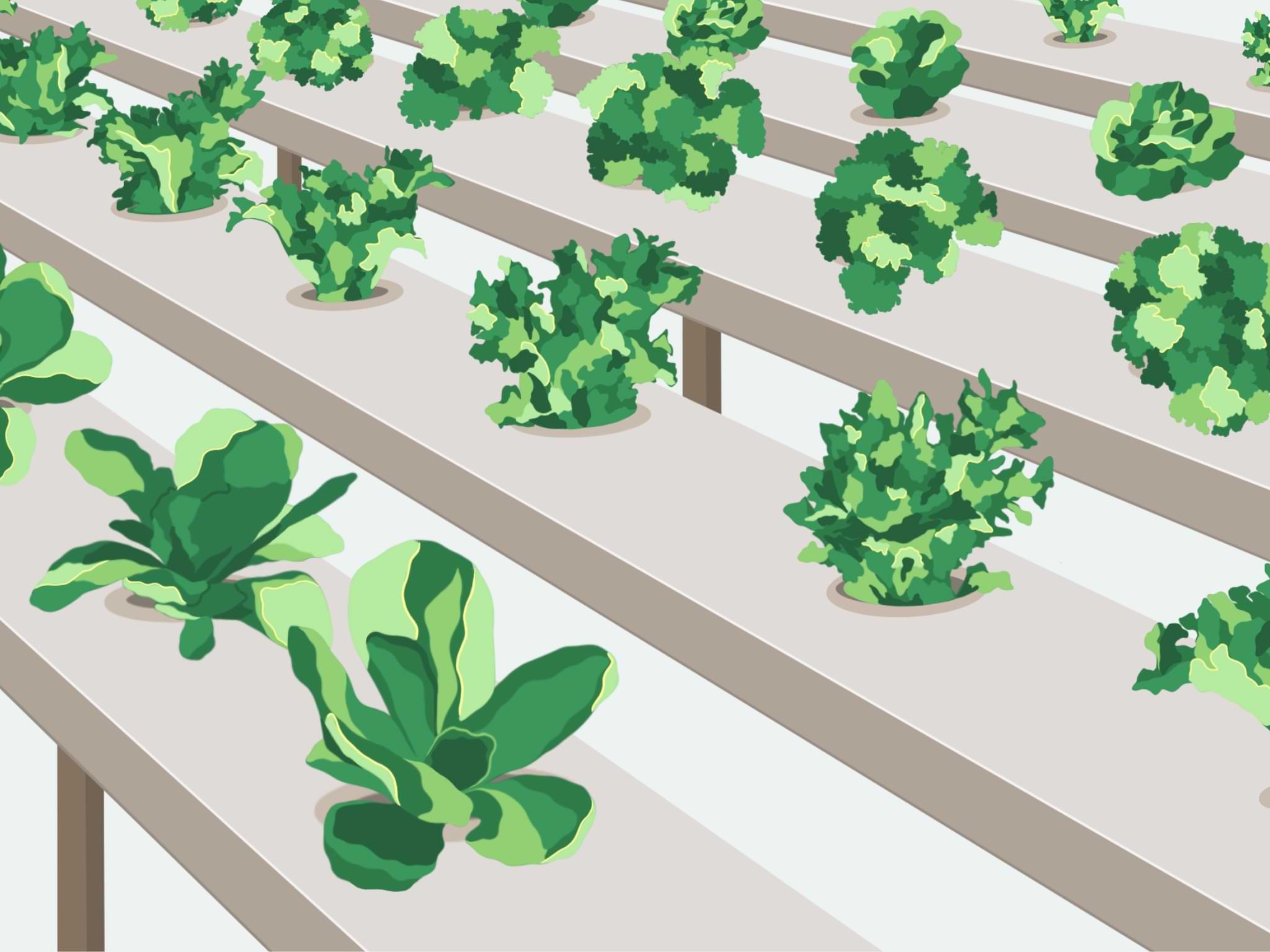 Agriculture & alimentation bas-carbone