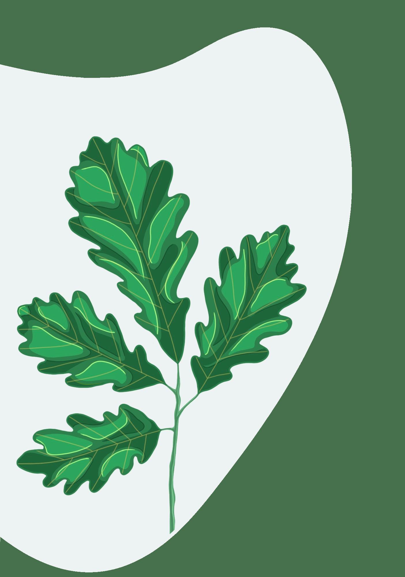 Numérique responsable & communication verte