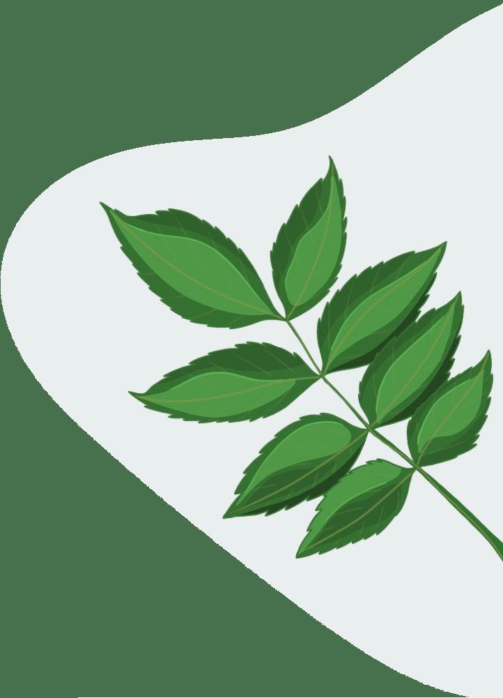 Transition énérgétique & zéro carbone