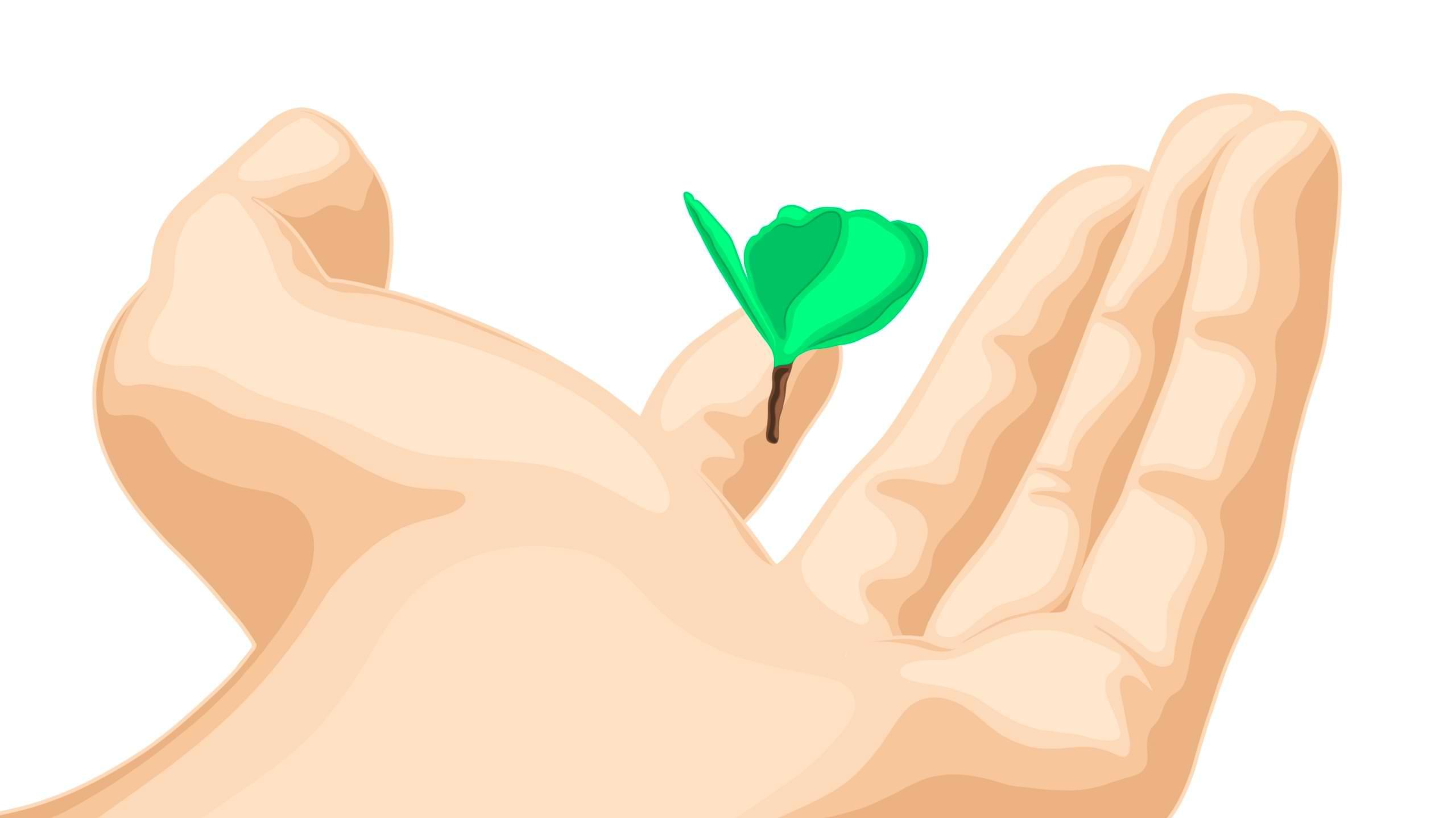 Site écologique & éco-conception web